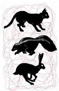 Image of silhouetted animals including cat, skunk, and rabbit
